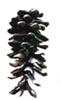logo-cve